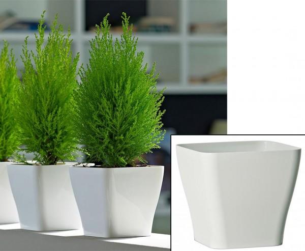 Weißer Übertopf mit 14x12,5cm aus Kunststoff für Kunstblumen und Orchideen