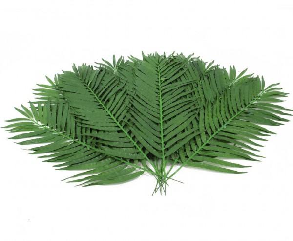 Künstliche Palmwedel mittel Set mit 12 Stück Länge ca. 110cm