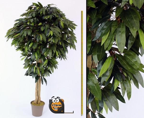 Mango Kunstbaum mit 1360 Blätter 175cm in Premium Qualität