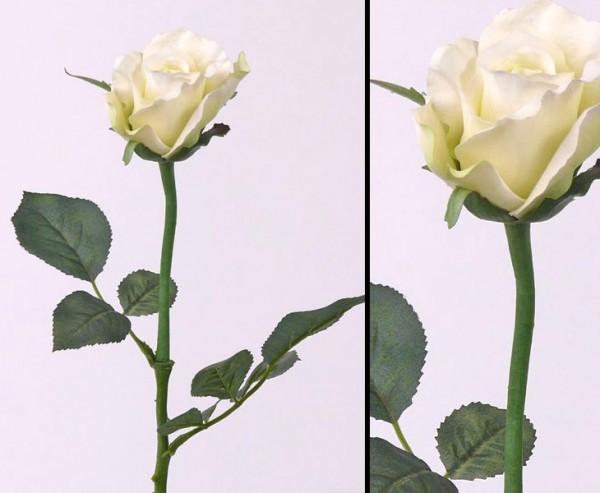 Dekoblumen, Rose Alice, mit 2 Äste und weiß- grün farbiger Blüte, Länge 58cm, Durch. 8cm
