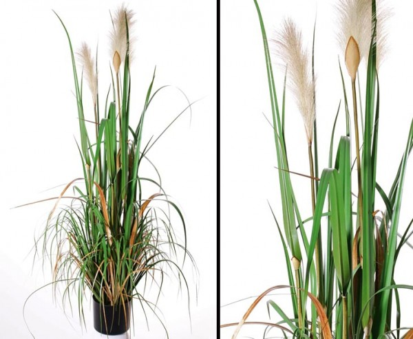 Pampas Gras Kunstpflanze blühend, Höhe ca. 120cm