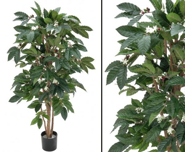 Kaffee Kunstpflanze mit Früchten und Blüten Höhe 120cm