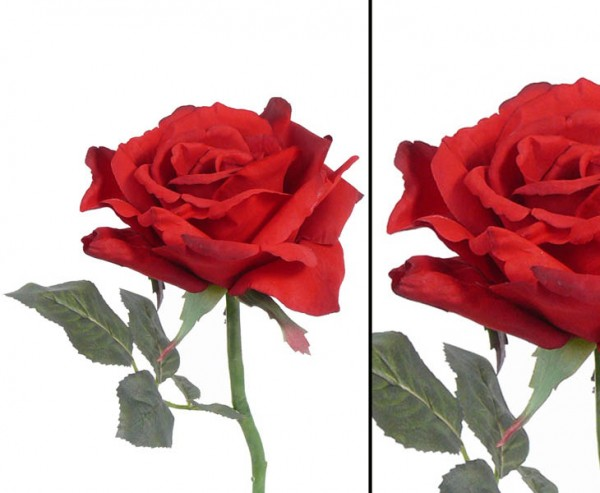 Rote Kunstblumen Rose mit offener Blüte, 31cm