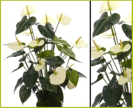 Künstliche Zimmerpflanzen