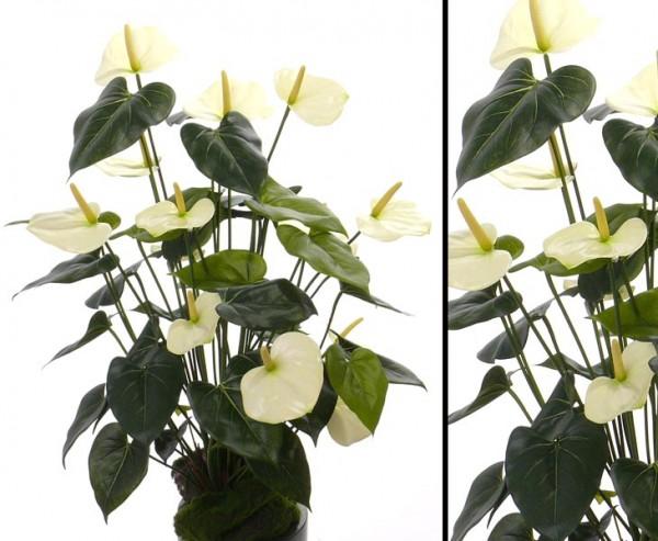 Kunstblume Anthurium mit 13 weißen Blüten 80cm hoch