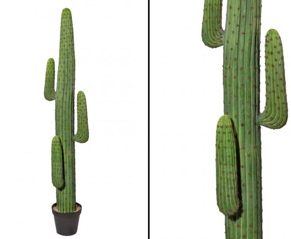 Mexikanischer Kaktus künstlich in grün 170cm, mit Topf