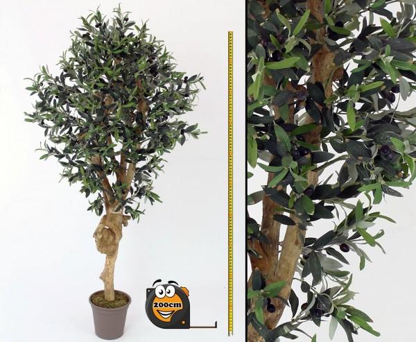 Oliven Kunstbaum 200cm mit dicken Naturstamm 3456 Blätter