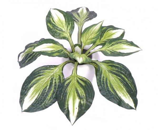 Hosta Busch 60cm, günstige künstliche Pflanze