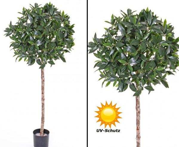 Lorbeer Kunstbaum, kugelform mit UV Schutz, Höhe ca. 175cm