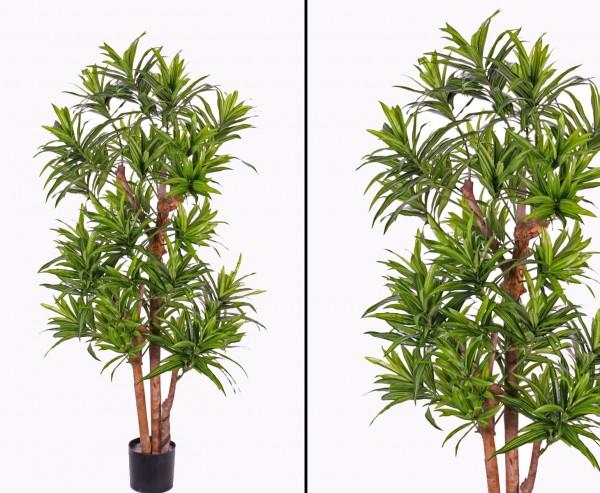 Dracaena Kunstbaum reflexa Höhe 120cm 846 Blätter