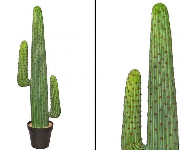 Mexikanischer Kaktus, grün mit Topf, 140cm