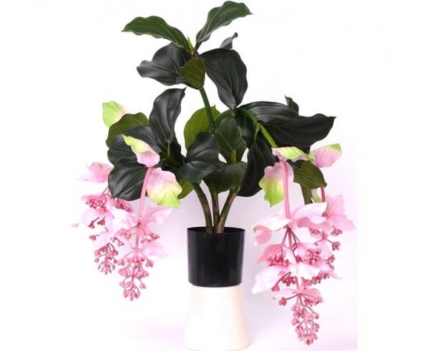 Medinilla künstlich 4 Blüten Höhe 80cm im Plastiktopf