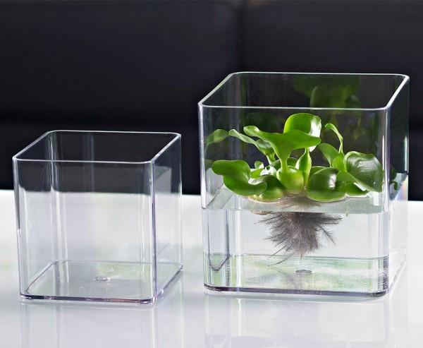 Blumen Vase transparent mit 21x21x21cm aus Kunststoff