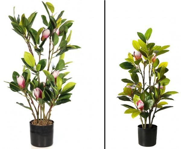 Magnolia Kunstpflanze mit 6 Blüten Höhe ca. 70cm im Topf