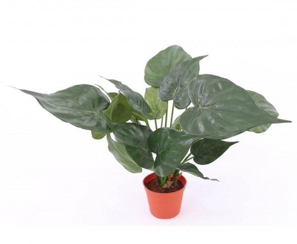 Pfeilblatt Alokasie Kunstpflanze mit 24 Blätter im Topf Höhe 61cm