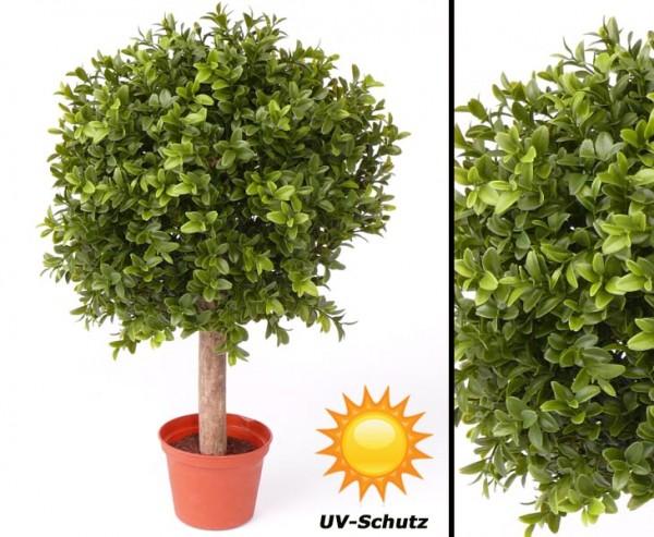 Buchskugel auf Stamm Blätter UV resistent Höhe mit Stamm 35cm