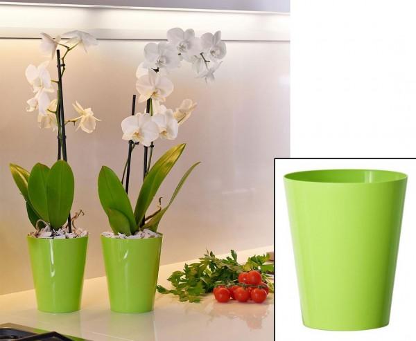 Vase für Orchideen in der Farbe apfelgrün mit H:15cm und Ø12,5cm aus PP