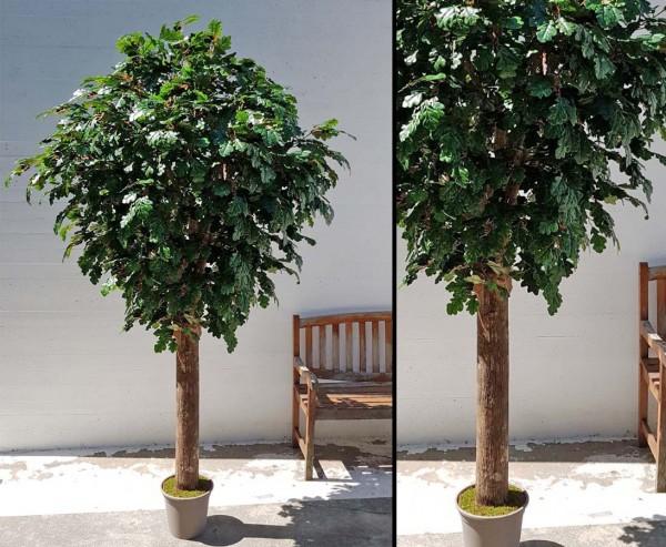 Eichen Kunstbaum 240cm mit dickem Stamm und 3150 Blätter mit UV Schutz