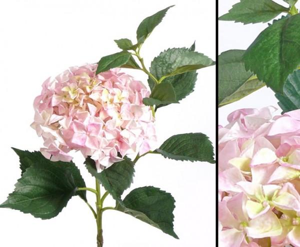 Künstliche Hortensie mit rosa- weißer Blütenkrone, 105cm