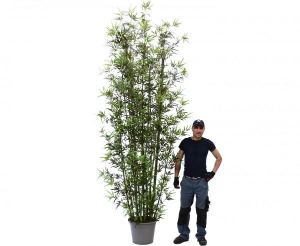 Gigantische maxi Bambus 400cm hoch mit Textilfaser Blätter UV geschützt