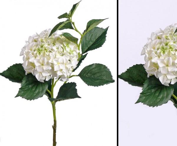 Weiße Hortensie Kunstblume, mit 105cm, Blüten Durch. 25cm