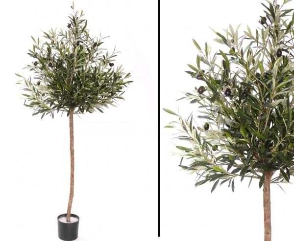 Olivenbaum kugelform 130cm, 1560 Blätter und 42 Oliven