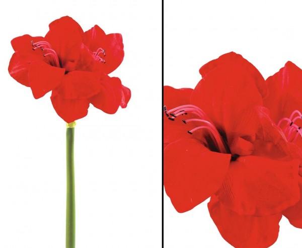 Amaryllis Kunstblume mit 2 Blüten aus roten Blättern Länge 72cm