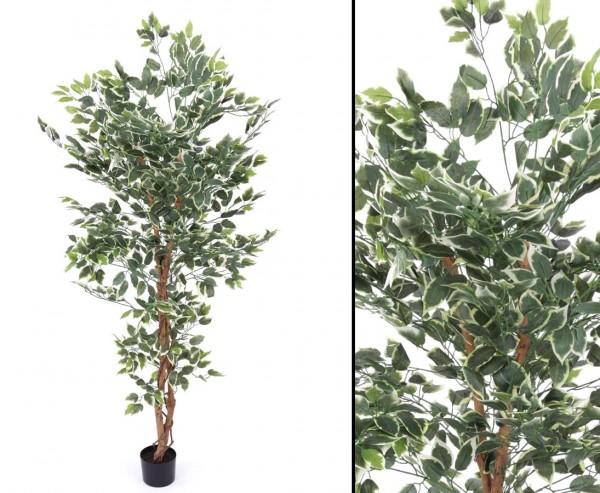 Kunstbaum Ficus grün-weiß mit 200cm und 2064 Blätter aus Textilfaser Material