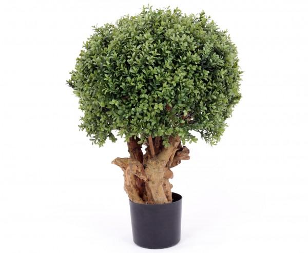 Buchs Kunstbaum mit Echtstämmen in Premium Qualität, Höhe 76cm