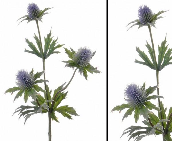 Distel Zweig mit 3 Blüten Länge ca. 40cm