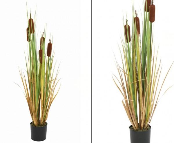 Schilfrohr Kunstpflanze mit 5 braunen Binsen 150cm hoch
