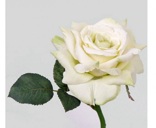 Weiße Kunstblumen Rose mit offener Blüte, 31cm