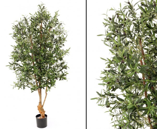 Olivenbaum UV safe 4160 Blätter 120 Oliven Höhe ca. 170cm