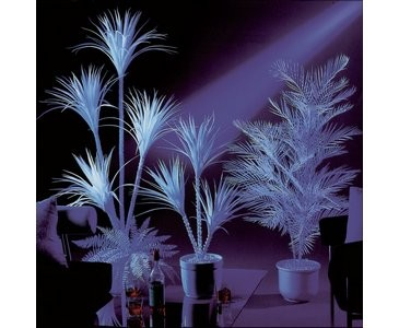 Kentiapalme künstlich 3-fach, uv-weiß,  170cm