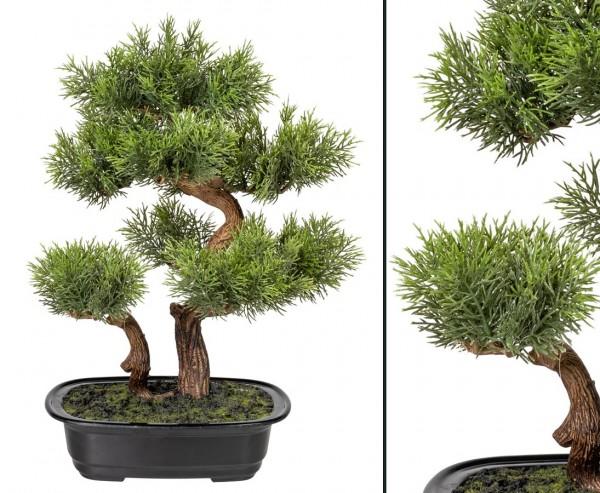 Zeder Bonsai Kunstbaum mit 2 Stämmen in Schale 40cm