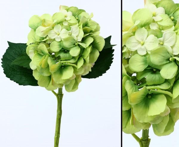 Kunstblume Hortensie mit grün-weißer Blüte wasserfester Stiel Länge 50cm