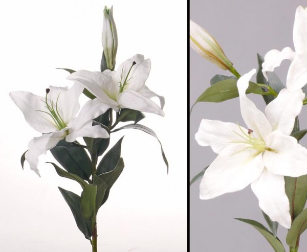 Lilie Kunstblume, real touch Gefühlsecht, Länge 95cm