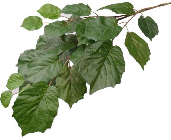 Lindenblatt Zweig, schwer entflammbar mit 25 Blätter, Länge 75cm