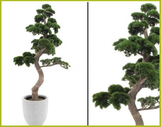 Kunstliche-Zimmerpflanzen-von-kunstpflanzen-discount-com
