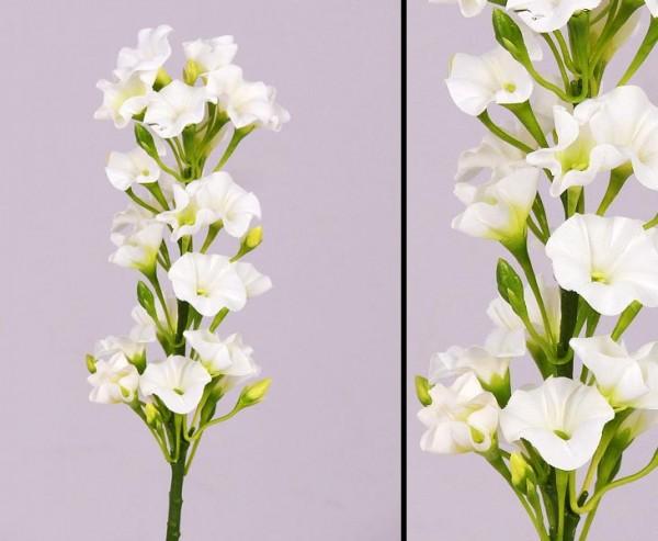 Phlox Flammenblume künstlich weiß, Höhe 35cm