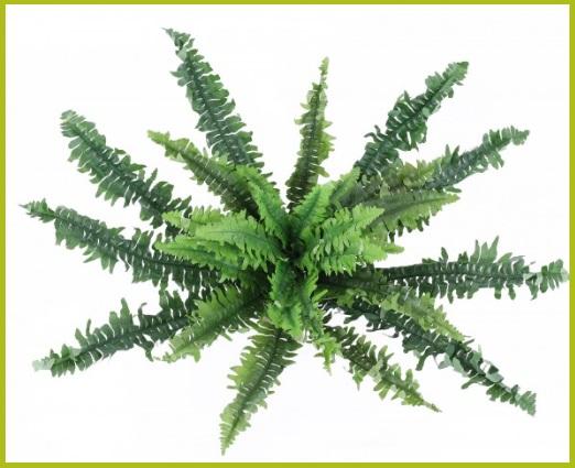 künstliche Bodenpflanzen