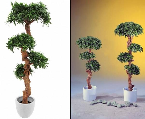 Bonsai Palmenbaum, mit 4800 Blättern, 120cm