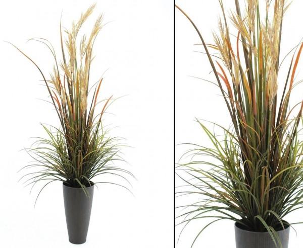 Schilfgras, Kunststoffpflanze bunt für Außen, Höhe 175cm