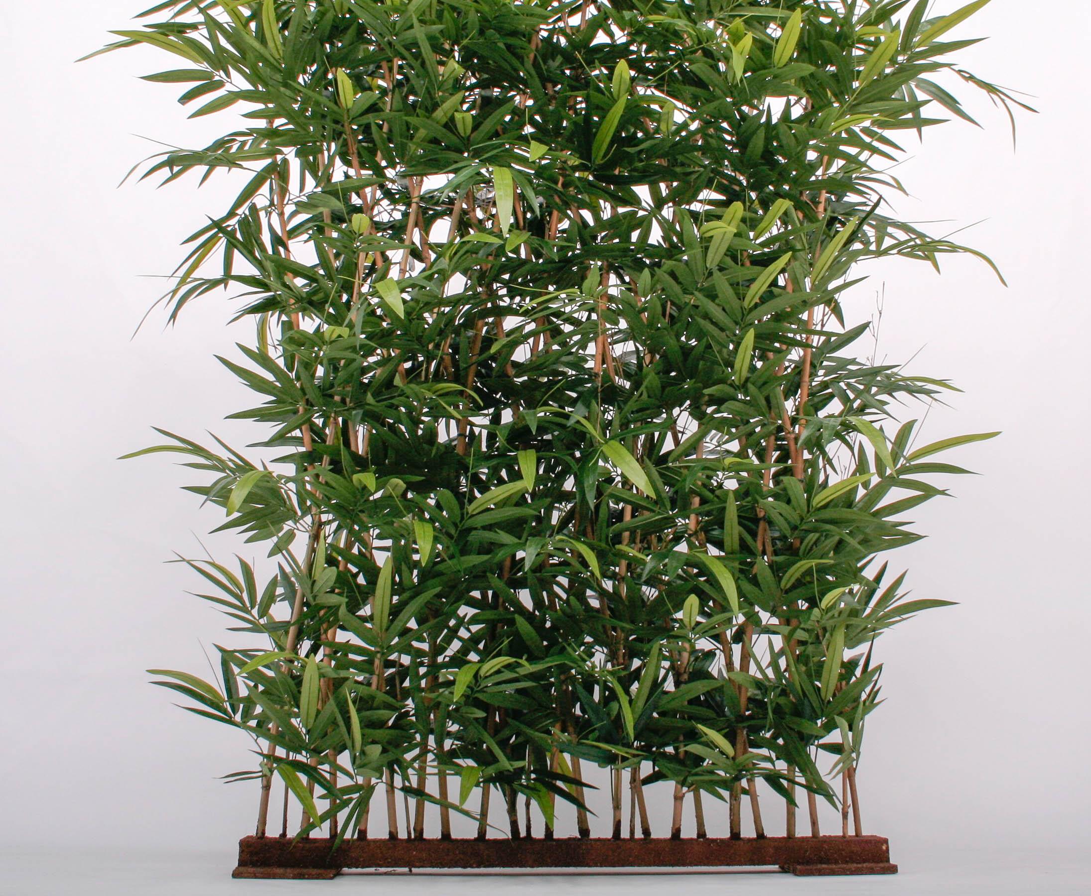 Kunstliche Hecke Wetterfest Aus Bambusblattern Gunstig Kaufen