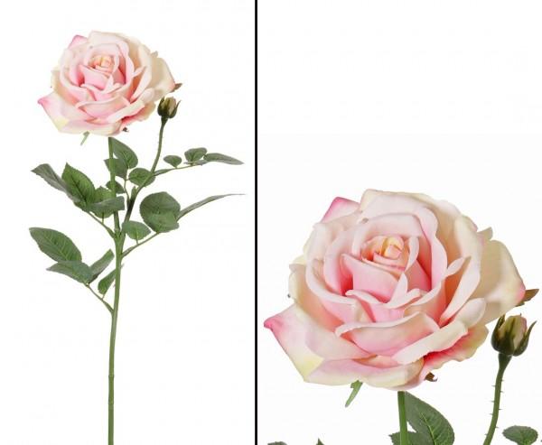 Rose künstlich rosa-weiß farbige Blüte Durch. 12cm Länge 70cm Alice de luxe