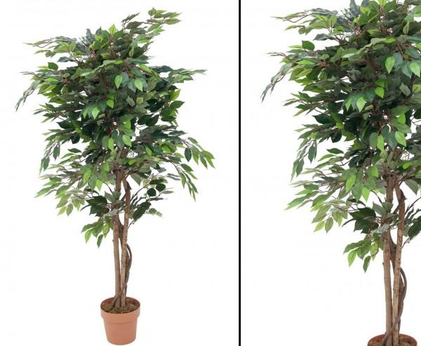 Künstlicher Ficus mit 1260 Blätter im Zementtopf Höhe 180cm