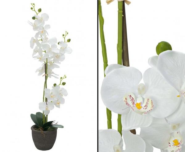 Orchidee künstliche Blume mit weißen Blüten 65cm im Topf