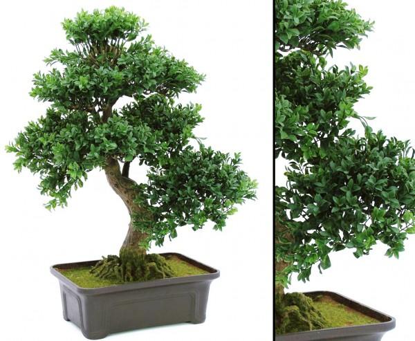 Bonsai Kunstpflanze mit Schale, 538 Blätter, 61cm hoch