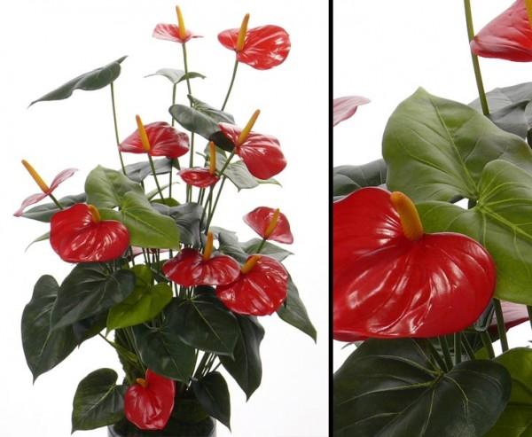 Flamingo Kunstblume mit 13 roten Blüten, 80cm