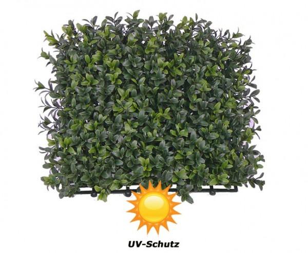 Kunstpflanzen Buchs Element 25x25cm mit UV Schutz